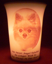 pet memorial candle for Talullah