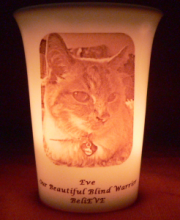 pet memorial candle for Eve